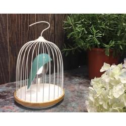Lampe et enceinte Jingoo L'oiseau bleu DAQI CONCEPT